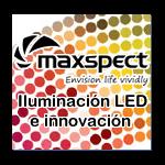 logo-maxspect