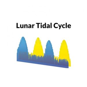 lunartidalcycle_3_1