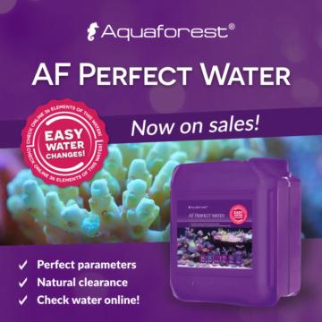 AF-Perfec-Water_w-sprzedazy_EN-360x360