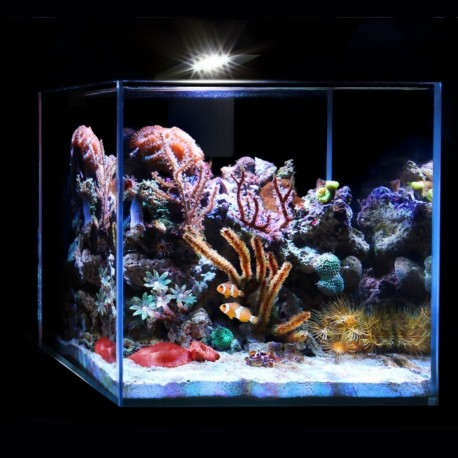 acuario-marine-set-15-litros-aqualighter