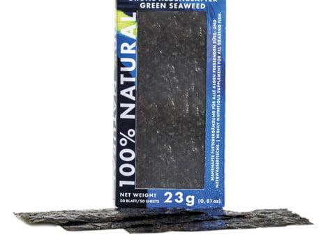Green Seaweed copia