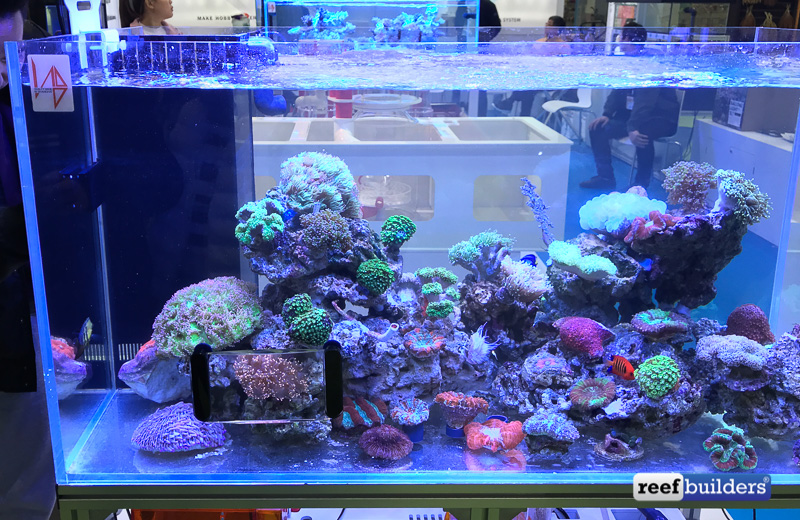 maxspect-fragnifier-coral-viewer-4