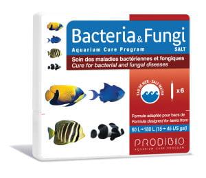 BACTERIA & FUNCGI - SALT