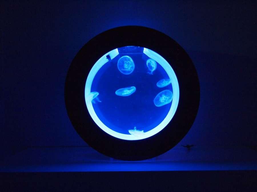 cubic-blau