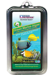 Green Seaweed