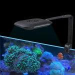 Jebao-todos-espectro-de-luz-agua-de-mar-LED-coral-algas-l-mpara-cilindro-AK80-remoto