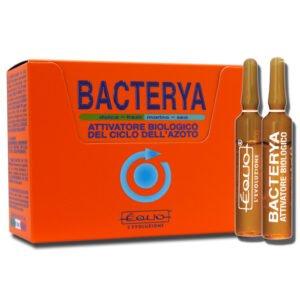 bacterya_12f