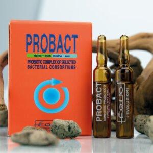 probact-1