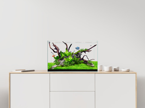 display.clear_.mini_