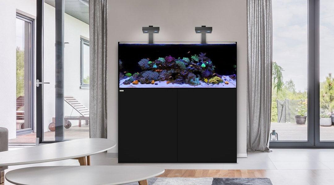 web.1800x1000.Reef130_1080x