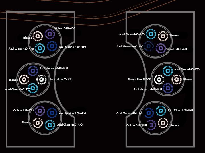 Cluster ESP
