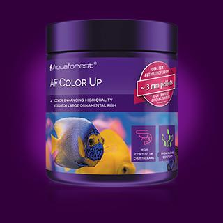 AF_Color-Up_Soon.png