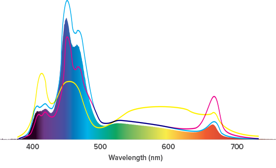 spectrum_hd.png