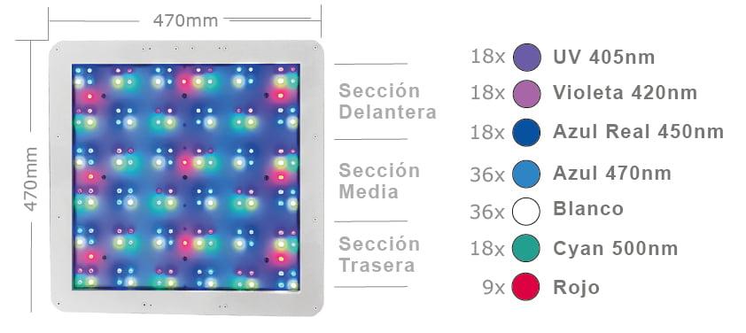 LEDS-ESP.jpg