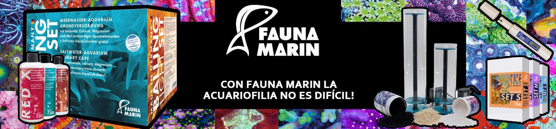 Fauna Marin Banner